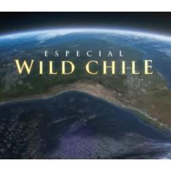 Documental Wild Chile