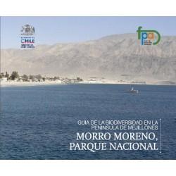Guía de la biodiversidad en la península de Mejillones